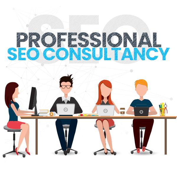 professionnal-seo-consultancy